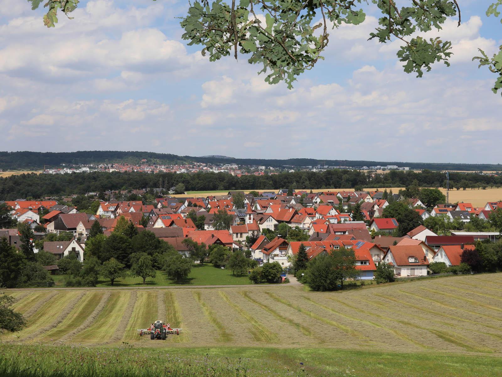 Ansicht auf Neuweiler